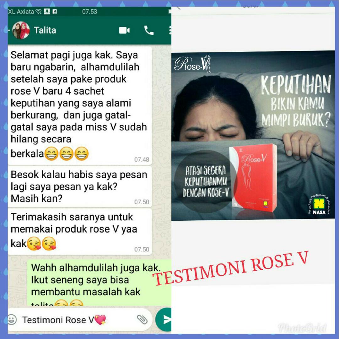 TESTI ROSE V 24