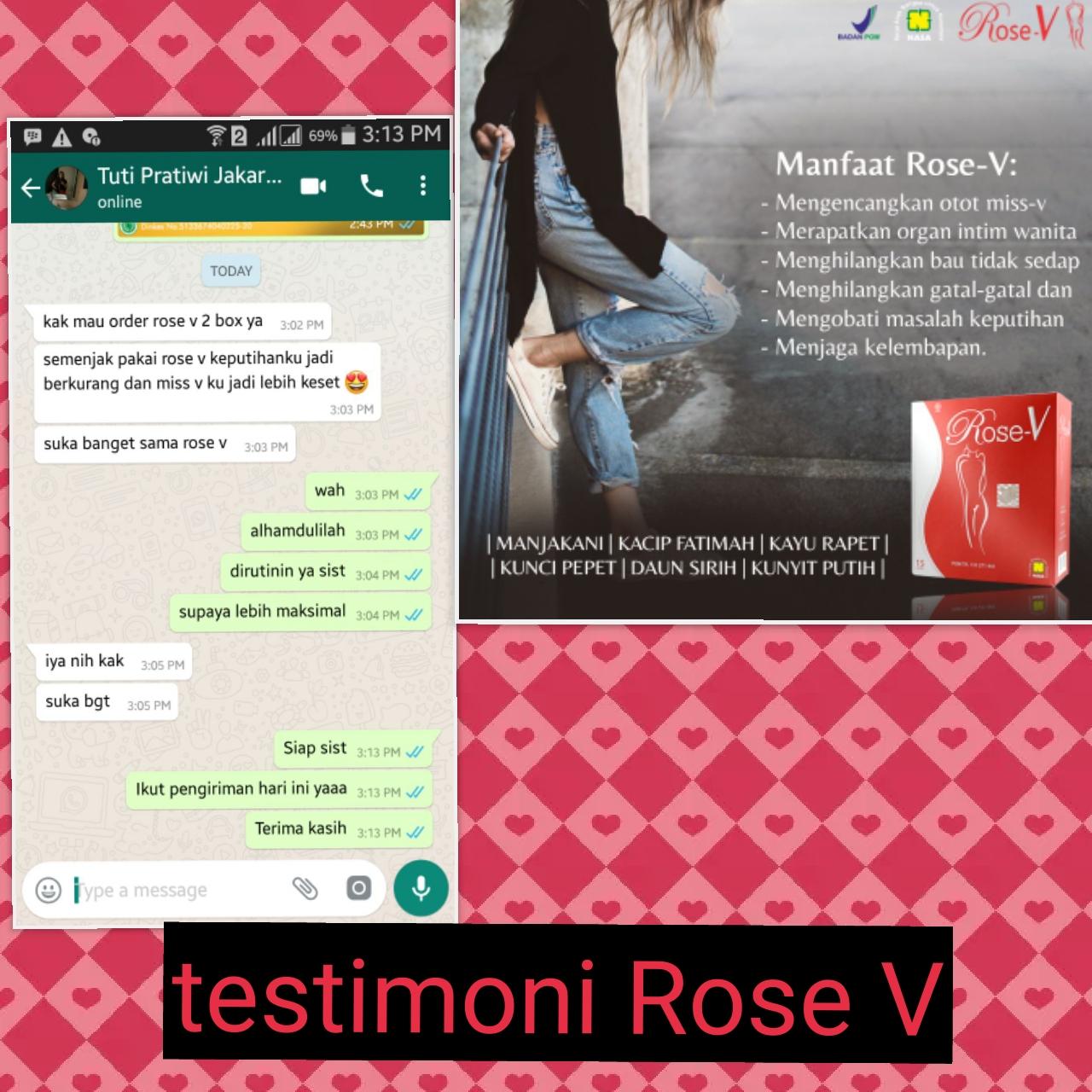 TESTI ROSE V 49