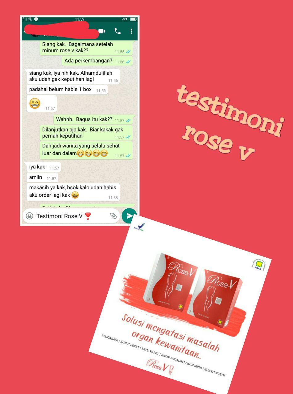 TESTI ROSE V 5