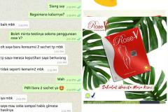 TESTI ROSE V 10