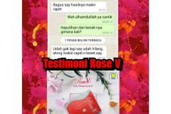 TESTI ROSE V 65