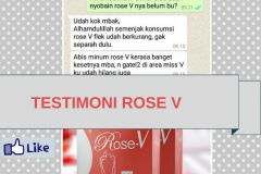 TESTI ROSE V 68