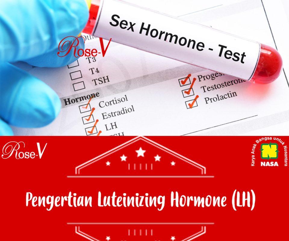 Pengertian Luteinizing Hormone (LH)