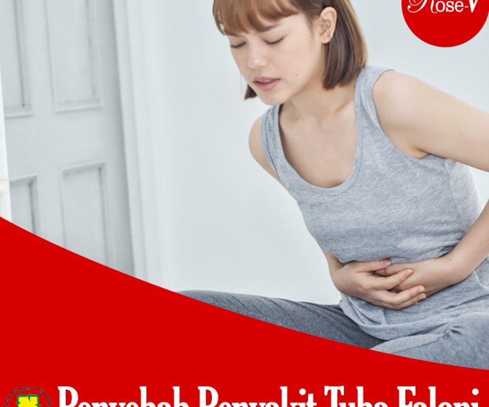 Penyebab  Penyakit Tuba Falopi