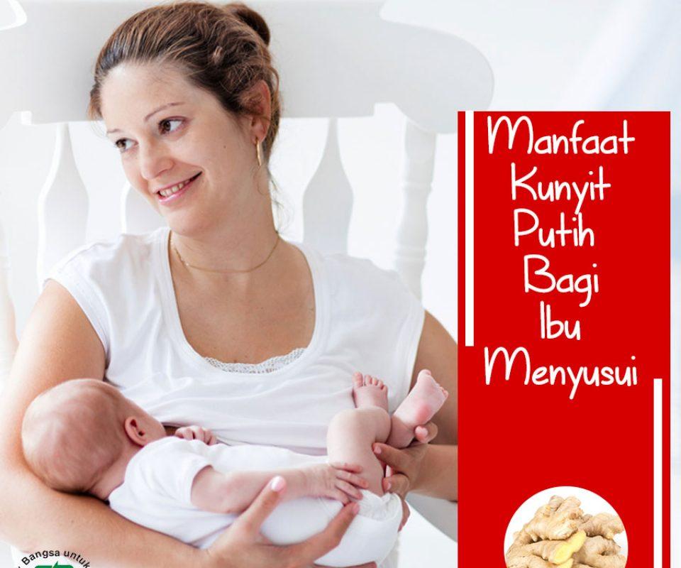 Manfaat Kunyit Putih Bagi Ibu Menyusui