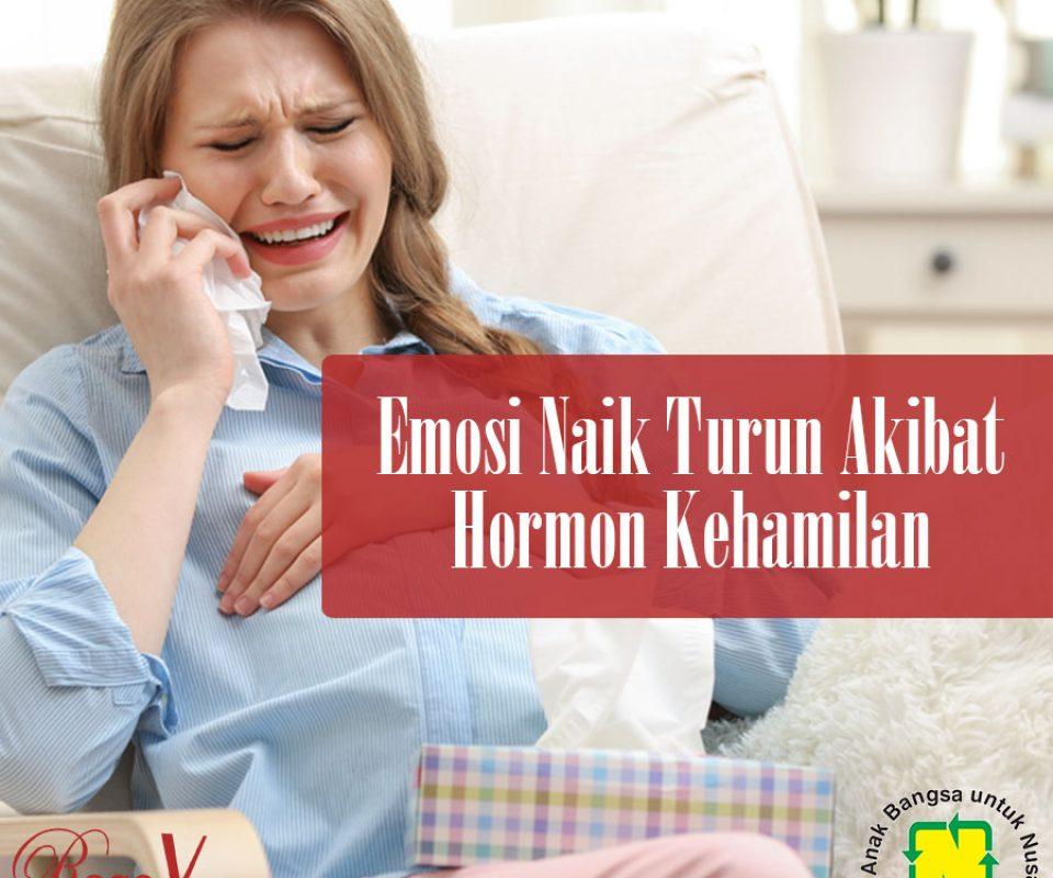 Emosi Naik Turun Akibat Hormon Kehamilan