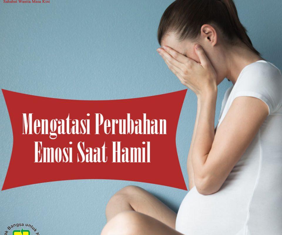 Mengatasi Perubahan Emosi Saat Hamil